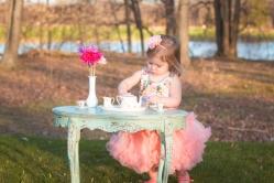brunswick-photographer-cleveland-toddler-photography-1