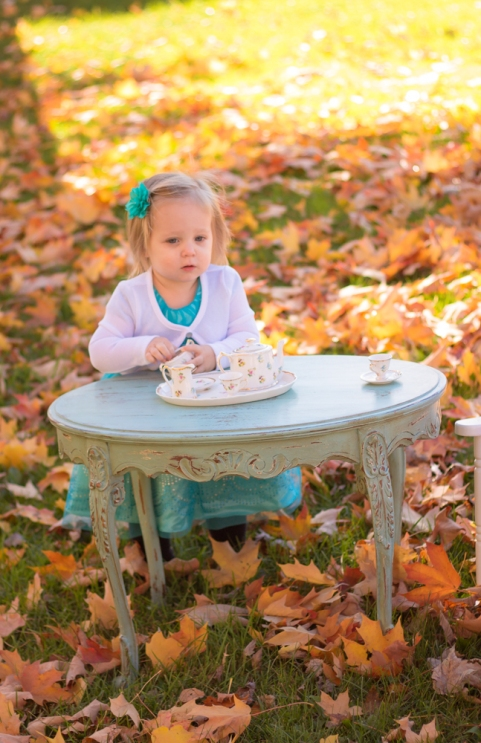 brunswick-photographer-cleveland-toddler-photography-tea-6